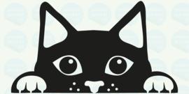 auto sticker • kattenkopje