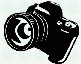 auto sticker • camera 2