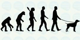 auto sticker • evolutie met een hond aan de lijn