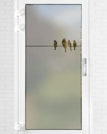 verticale statische raamfolie  •  Vogels op een draad