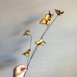 TAK vlinders