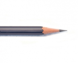 Palomino Blackwing 602 (stevig) - 12 pcs