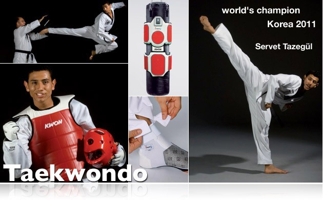 kwonlogotaekwondo.jpg