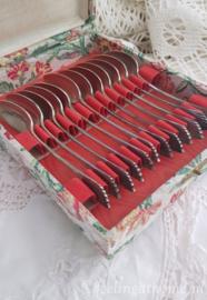 Verzilverde lepeltjes, 12 st