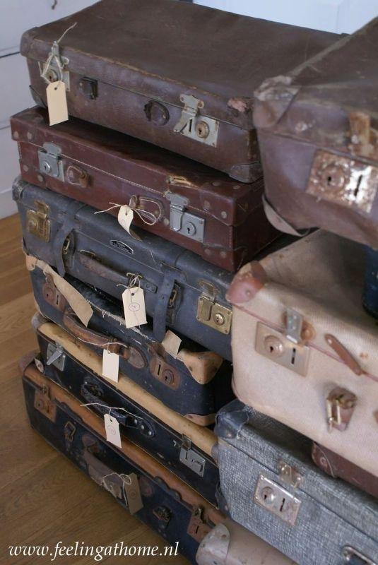 Set van 5 koffers