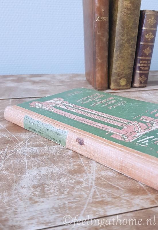 Frans lesboekje