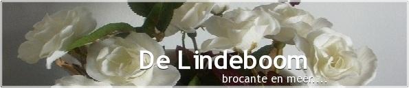 banner de lindeboom1.jpg