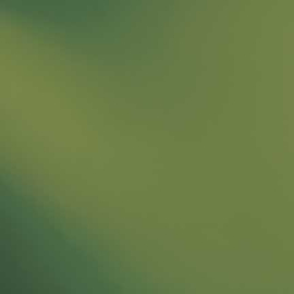 528-4SF olijf groen Spectrum