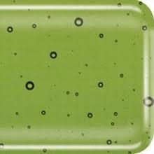 olijf groen transparant   (BB0416-H)