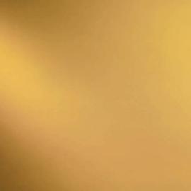 110-2F Bleek Amber transparant