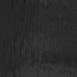1009-WF Zwart waterglas