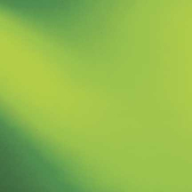 526-2SF Mos groen Spectrum