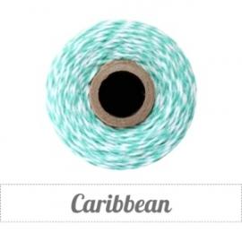 17.02 Baker`s twine mint groen / wit Caribbean