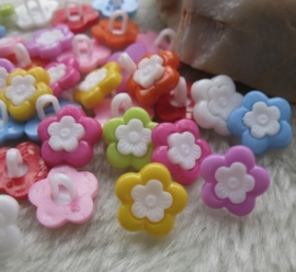 08.02 Gekleurde bloemen met witte kern
