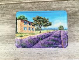 groot blikken doosje met lavendel veld