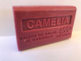 camelia / Kamelie