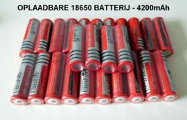 Set Dubbele Oplader samen met 2 stuks 18650 Oplaadbare Batterijen 4200 mAh