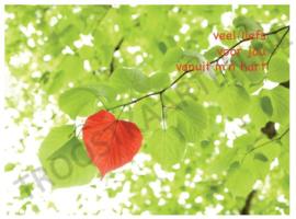 Rood hart (2805)