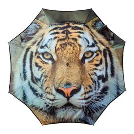 Opbouwbare Paraplu Tijger