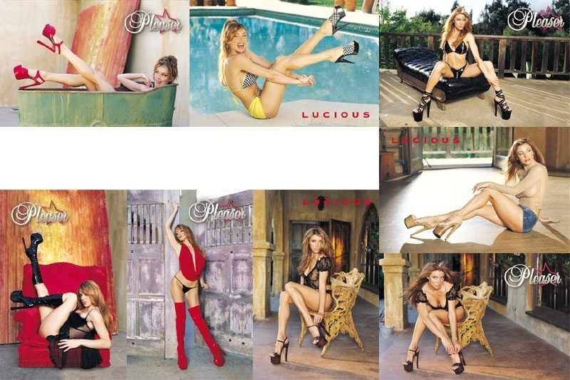 Pleaser posters - 5 x
