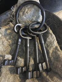 Metalen sleutelbos
