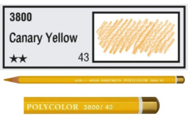 KIN-Polycolor nr.43   Canary Yellow