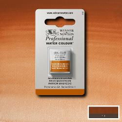 W&N Pro Water Colour ½ nap Magnesium Brow S.1