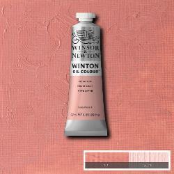 Winton 257 Flesh Tint  37 ml