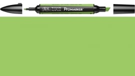 W&N ProMarker G258-Leaf green