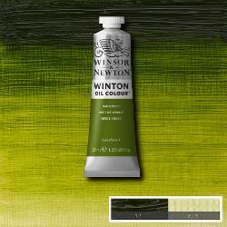 Winton  599 Sap Green 37 ml