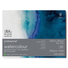 Winsor & Newton Pro- Aquarelpapier 22.9x 30.5 cm Rough  (grof)
