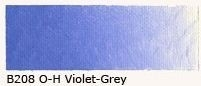 B-208 Old Holland violet-grey 40ml