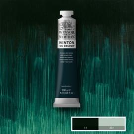 Winton  048 phtalo deep green   200 ml