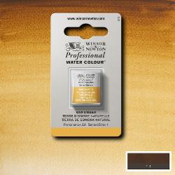 W&N Pro Water Colour ½ nap Raw Umbrer S.1