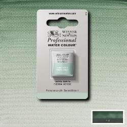 W&N Pro Water Colour ½ nap Terre Vert S.1