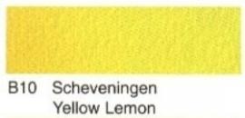 B10- Sch. Yellow lemon
