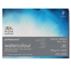 Winsor & Newton Pro- Aquarelpapier 30.5 x 40.6 cm Grain Satiné