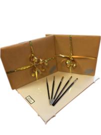 MusPaneel Cadeau Set Study-line 20x25 met Mus penselen