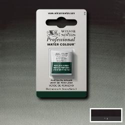 W&N Pro Water Colour ½ nap Perylene Green S.2
