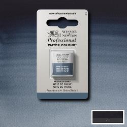 W&N Pro Water Colour ½ nap Payne's Grey S.1