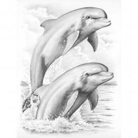 Schets-BN4- Dolfhins