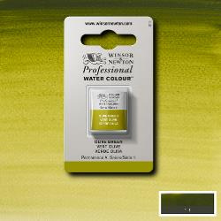 W&N Pro Water Colour ½ nap Olive Green S.1