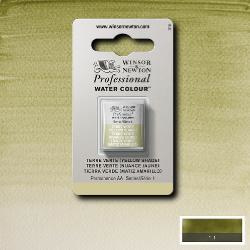 W&N Pro Water Colour ½ nap Terre Vert (Yellow Shade ) S.1