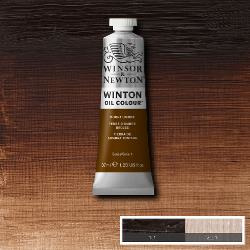 Winton 076 Burnt Umber 37 ml