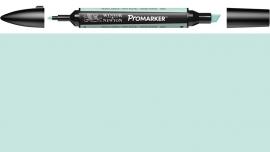 W&N ProMarker G829-Pastel green