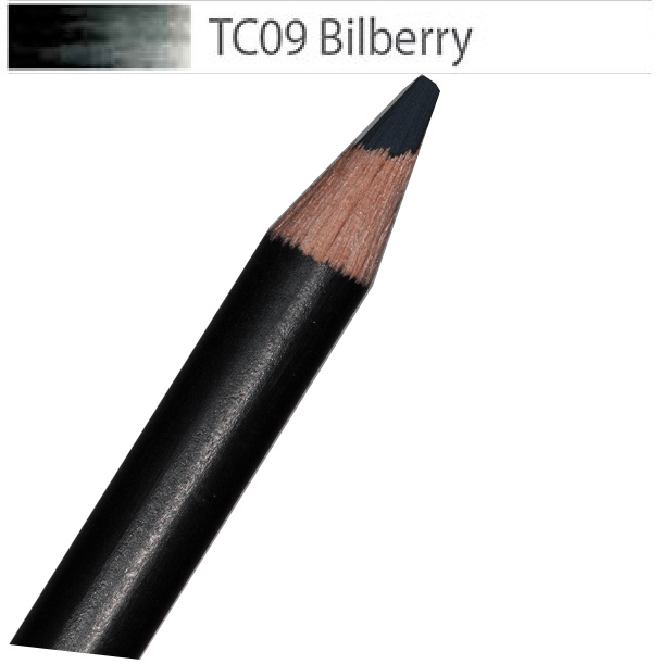 Derwent Tinted Charcoal BILBERRY