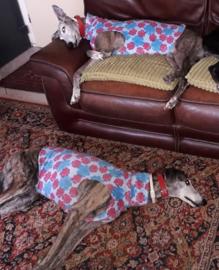 Fleece hemdjes voor teef - bloemen roze+turquoise
