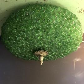 Plafondlamp knikker Groen