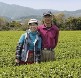 YANAGICHA  / MIYAZAKI BANCHA VAN FAMILIE MORIMOTO