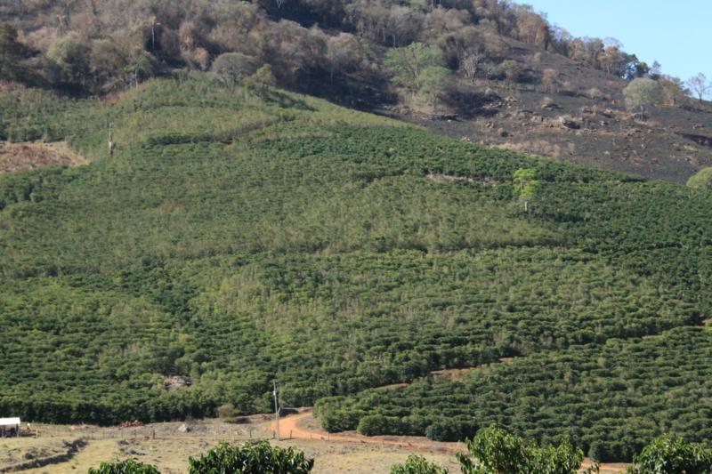 CHAPADA NATURAL